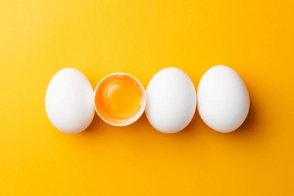 Eieren Tijdens Carnivoor Dieet?
