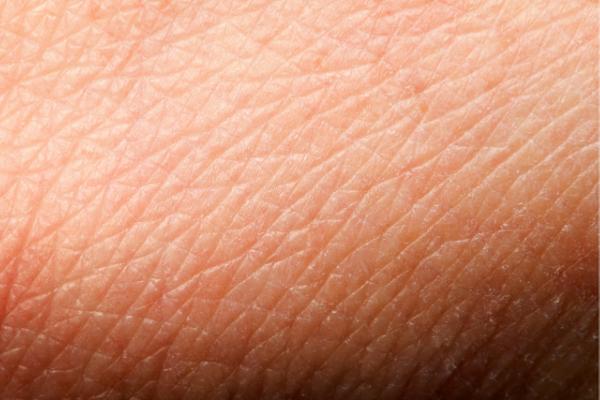 Welke invloed heeft het Carnivoor Dieet op jouw huid?